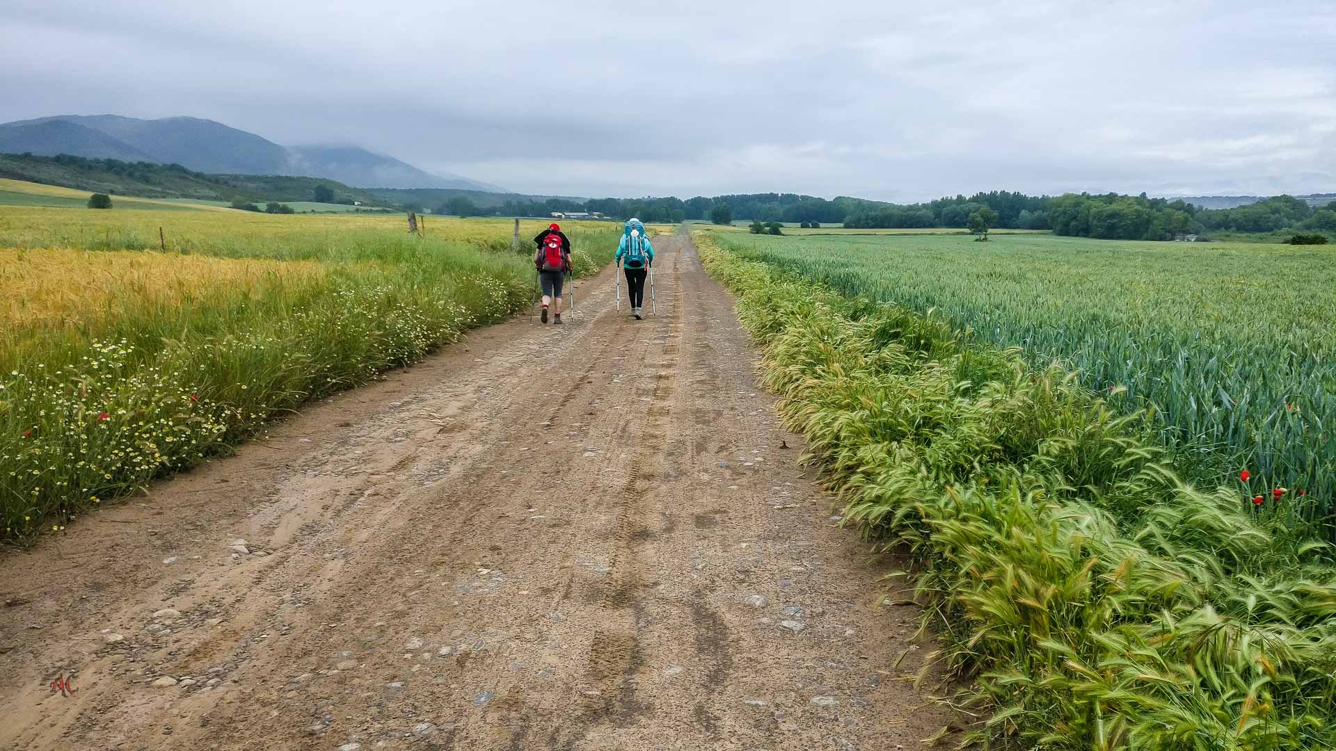 etapa del camino Aragonés, Arres a Artieda
