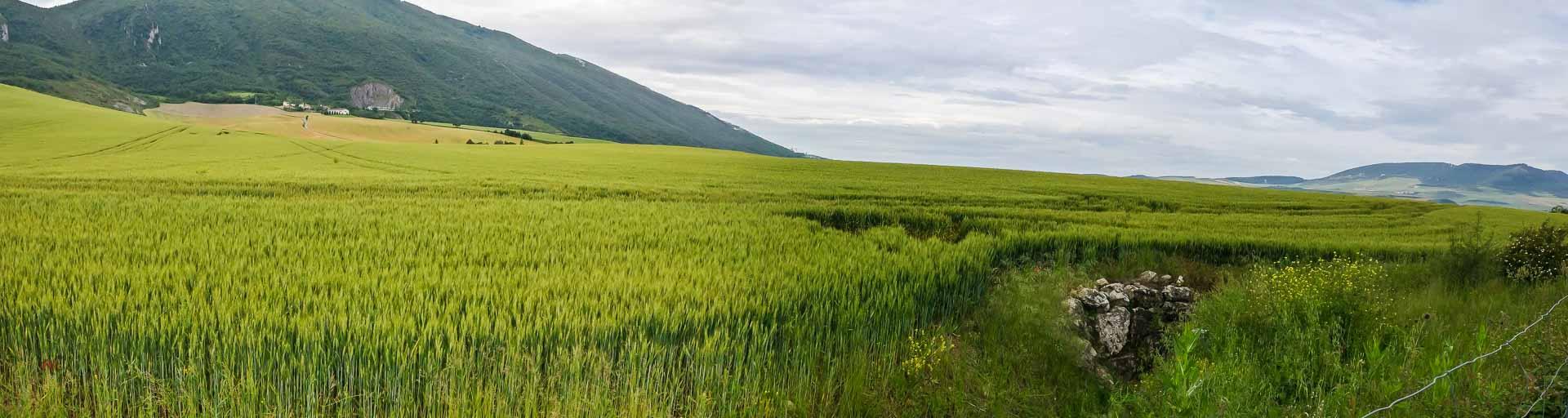Monreal Tiebas, Camino Aragones.