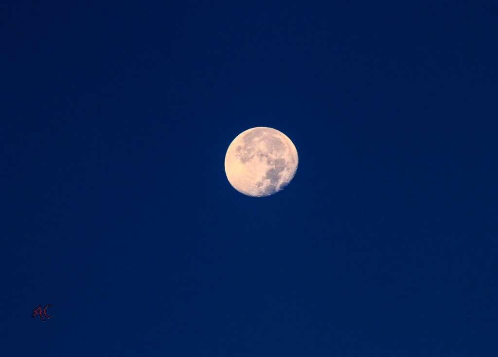 Luna de ribadeo