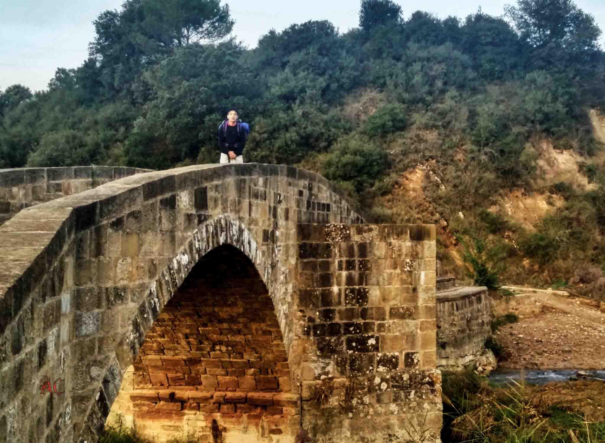 Camino de Santiago, Camino Frances. Zirauki Loas Arcos