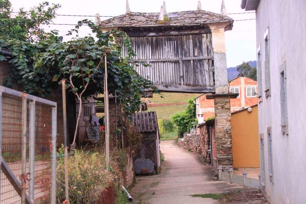 Camino de Santiago Lourenza Gontan