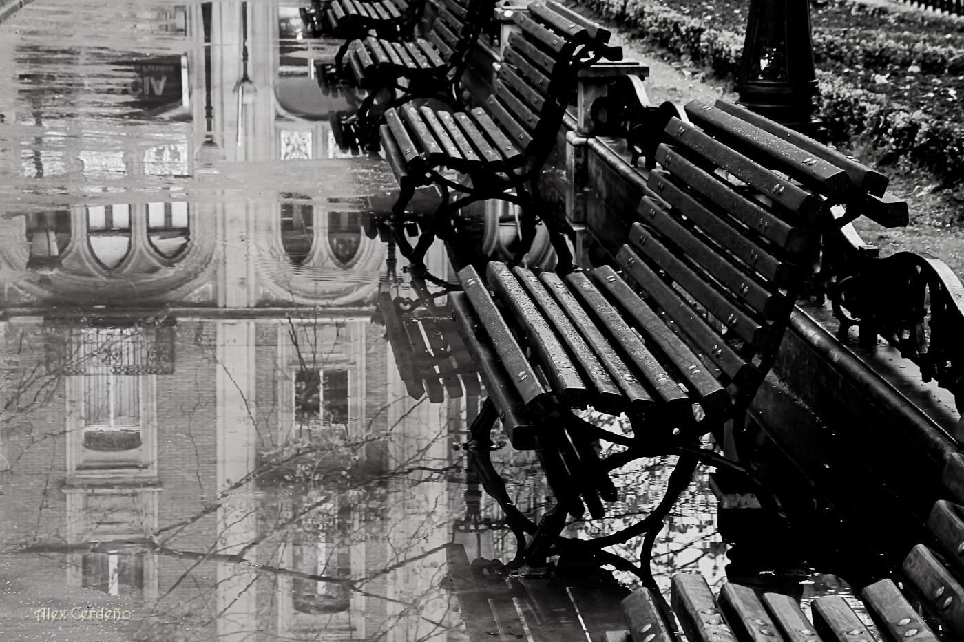Bancos en la lluvia