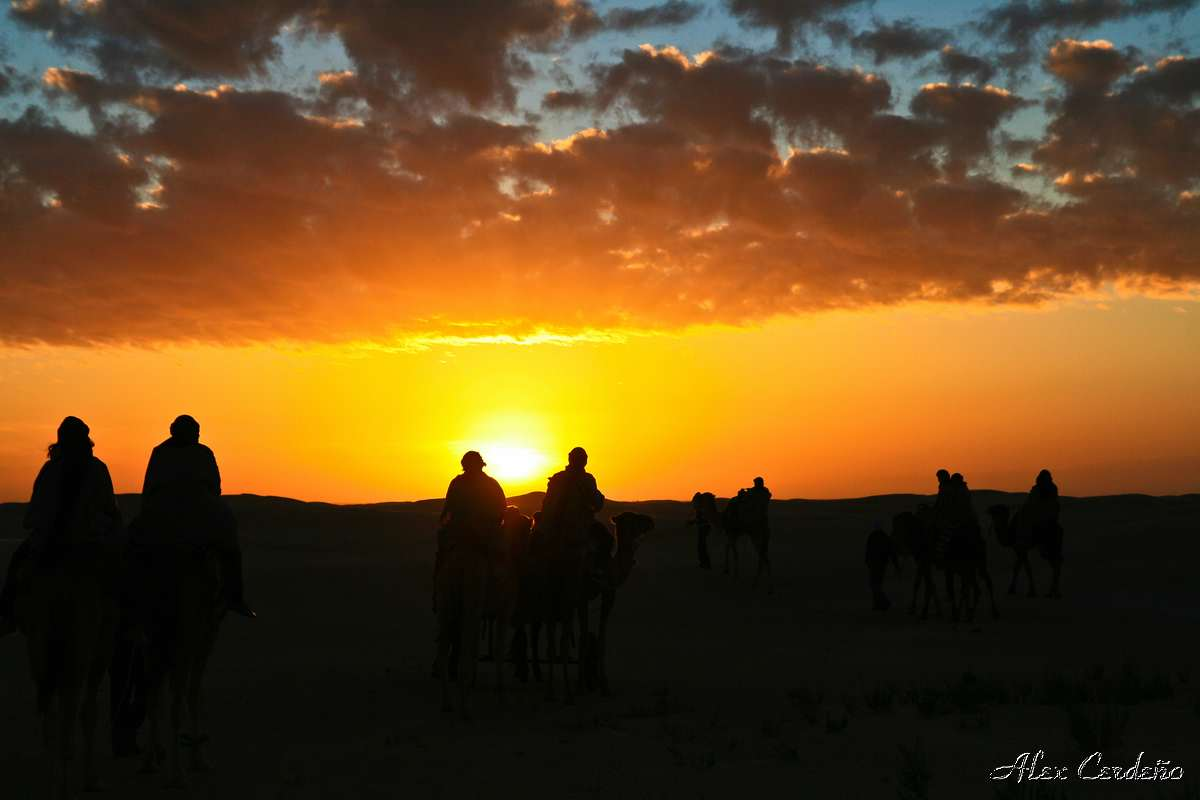 Sahara Tunezino